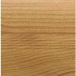 Wood_Tektum17